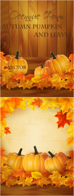 Autumn pumpkin and leaves vector / Осенние Фоны
