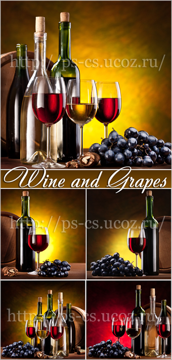 Wine and Grapes - Вино и Виноград